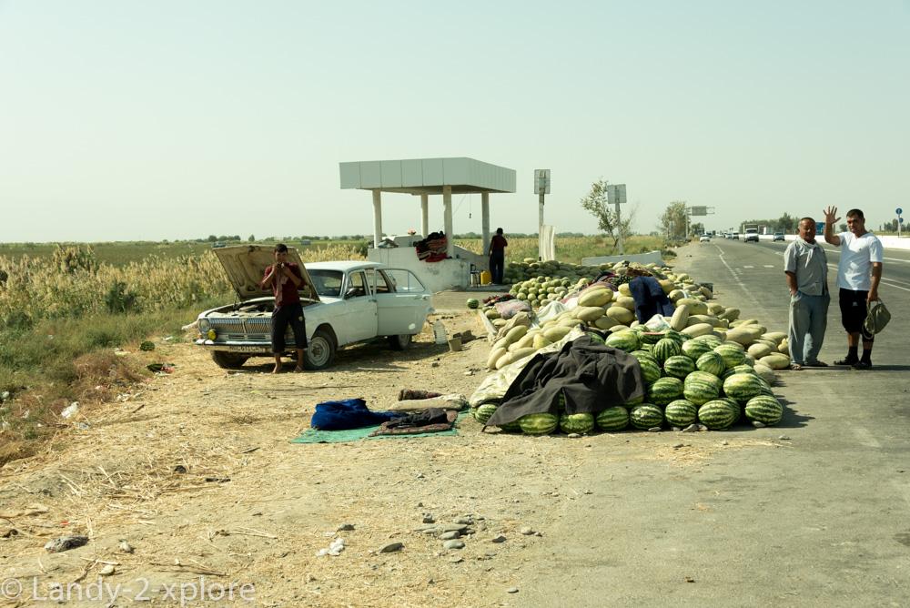 Melonen-1
