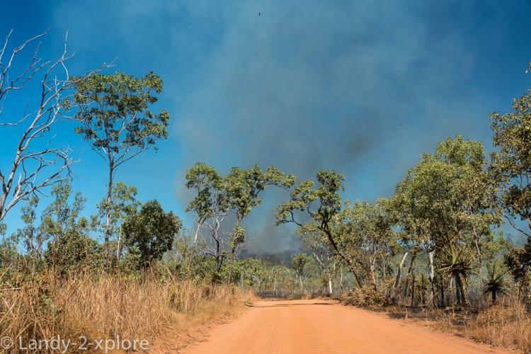 Bushfires-4
