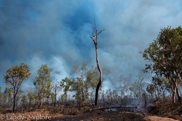 Bushfires-5