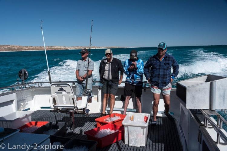 Coral-Bay-Fischen-und-Wale-13