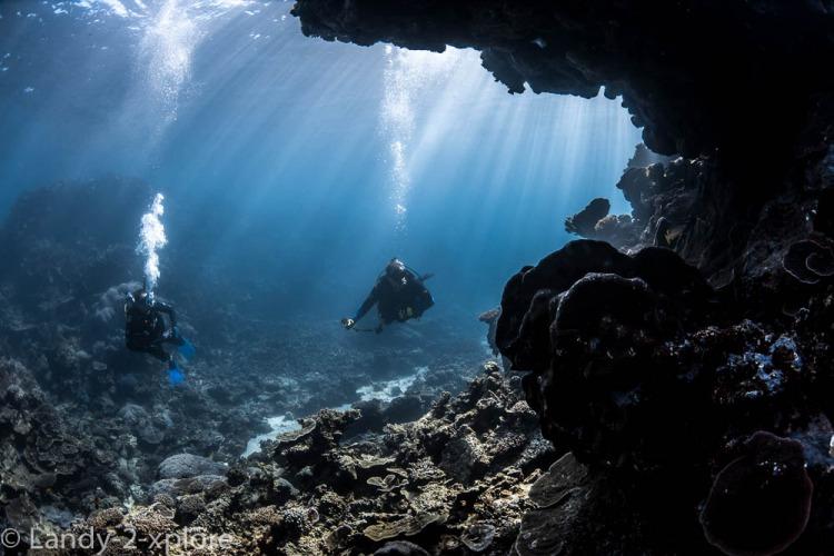Coral-Bay-Schnorcheln-und-Manta-2