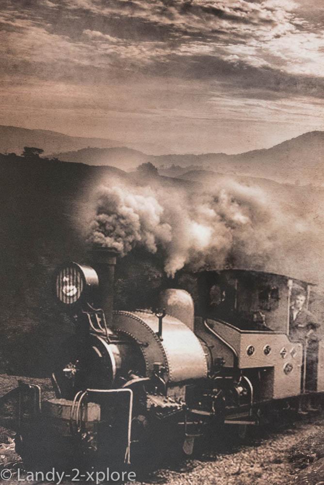 Darjeeling-1