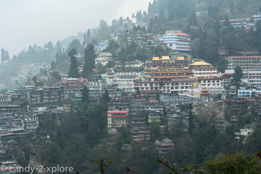 Darjeeling-6