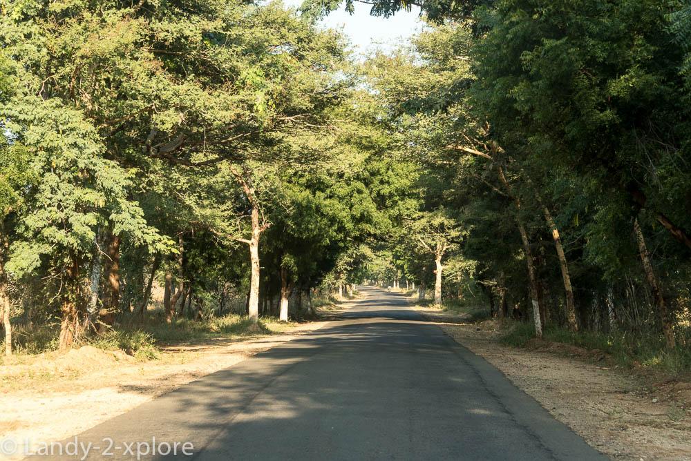 Nordwest-Myanmar-2