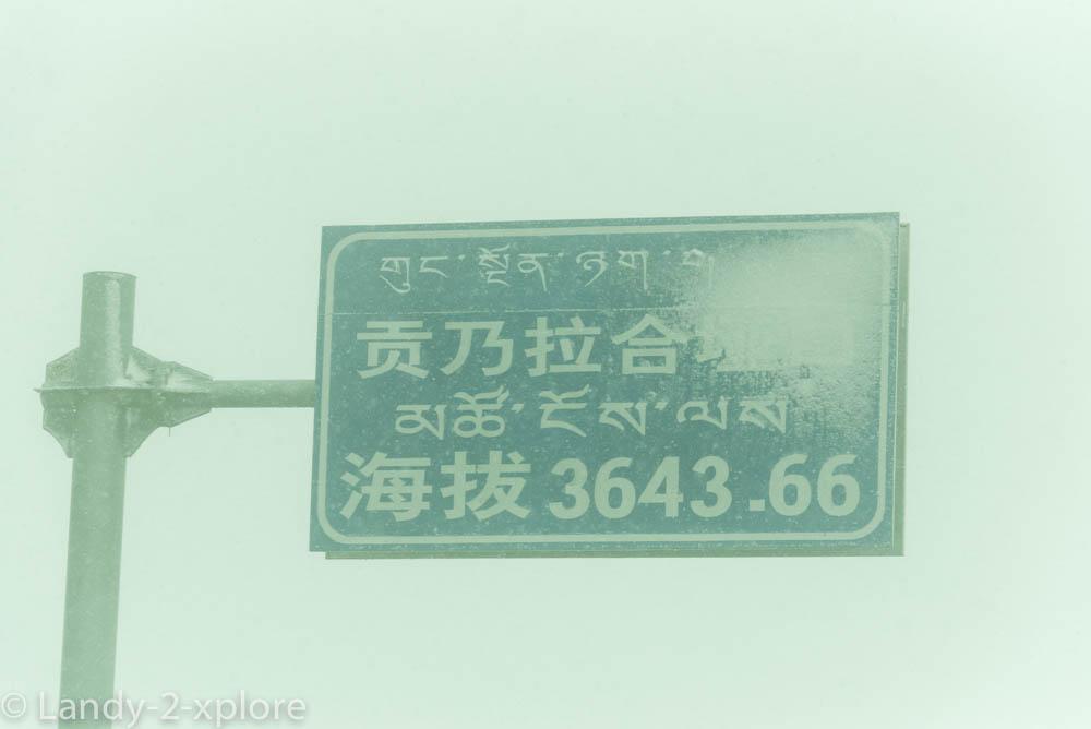 Xining-Xiahe-16