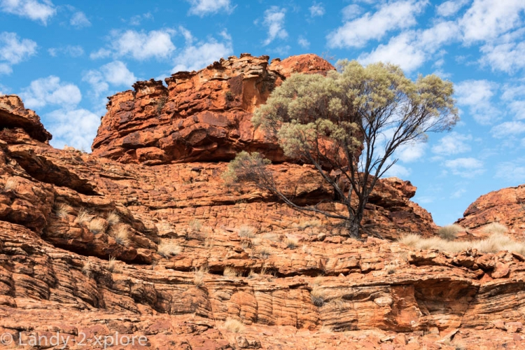 Red-Center-Kings-Canyon-3