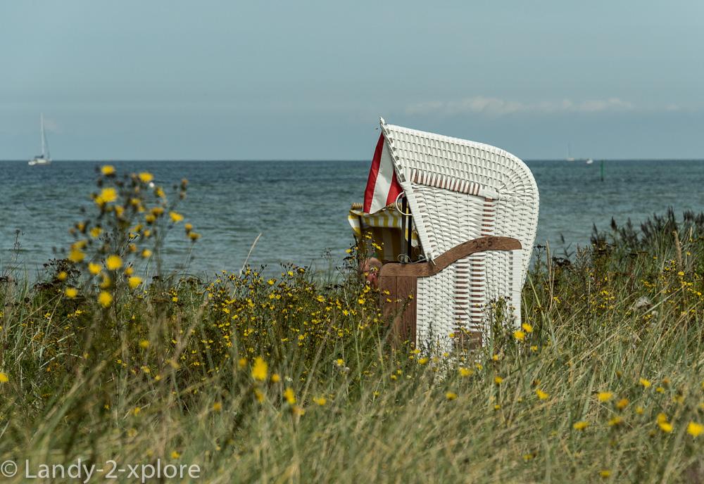 Strandleben-an-der-Kielerförde-4