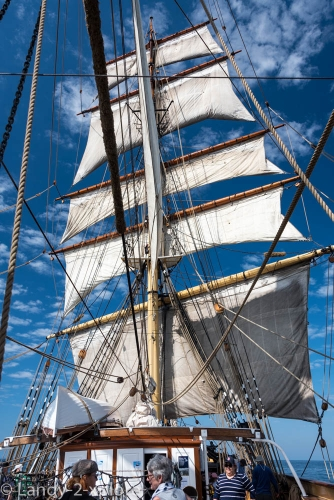 Sydney-Sailing-5