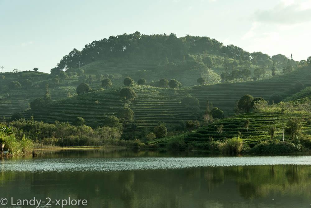 Zu-Reisterrassen-und-Teeplantagen-7